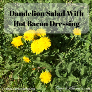 Dandelion Salad With Hot Bacon Dressing