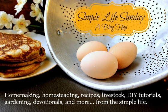 Simple Life Sunday #65 Featuring Nature or Nurture? & 5 Thrifty Activities For You And Your Children