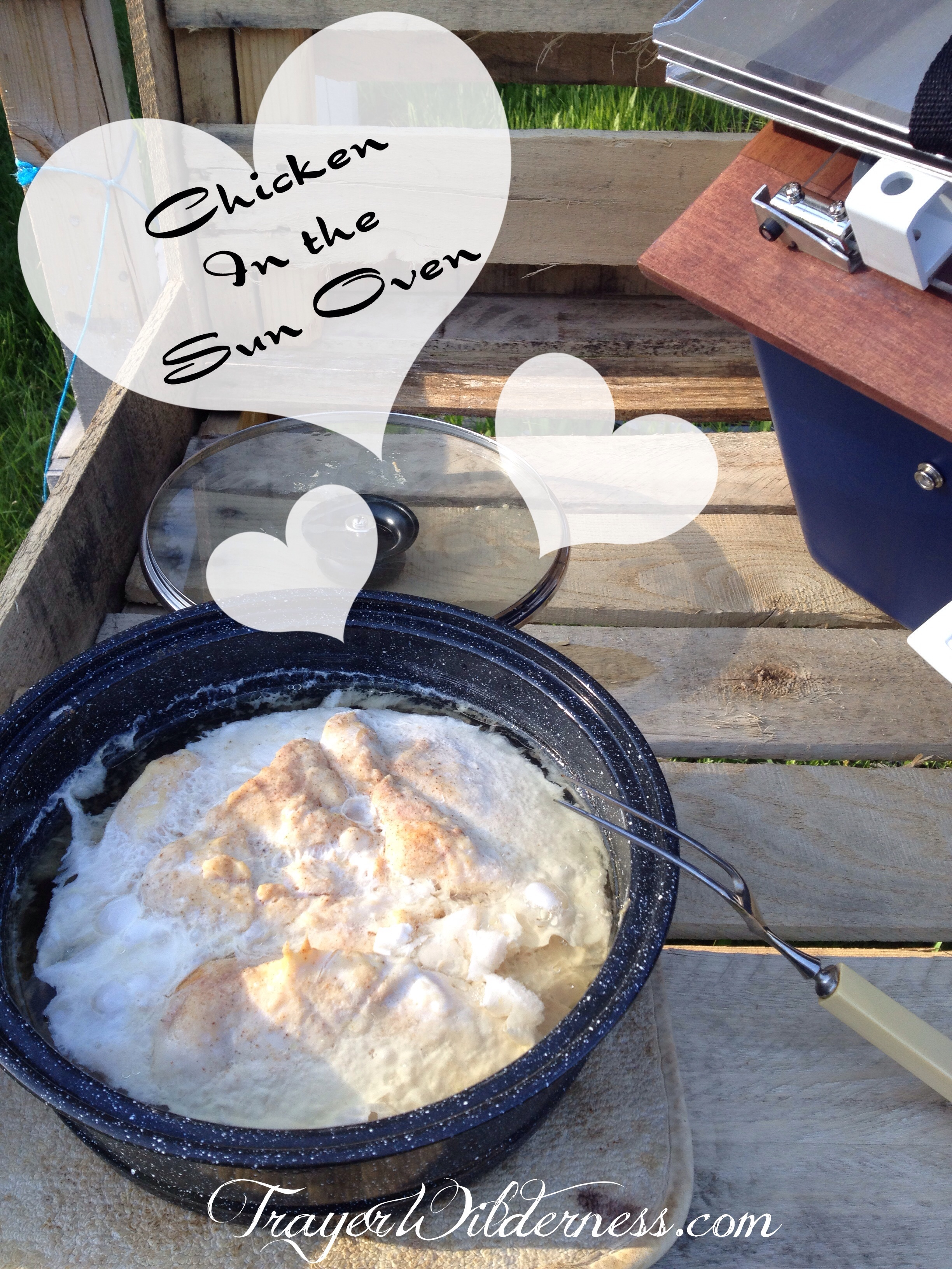 How To Make Chicken Breasts in a Sun Oven