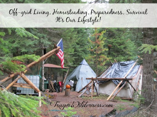 Off-grid Living, Homesteading, Preparedness, Survival – It's Our Lifestyle!