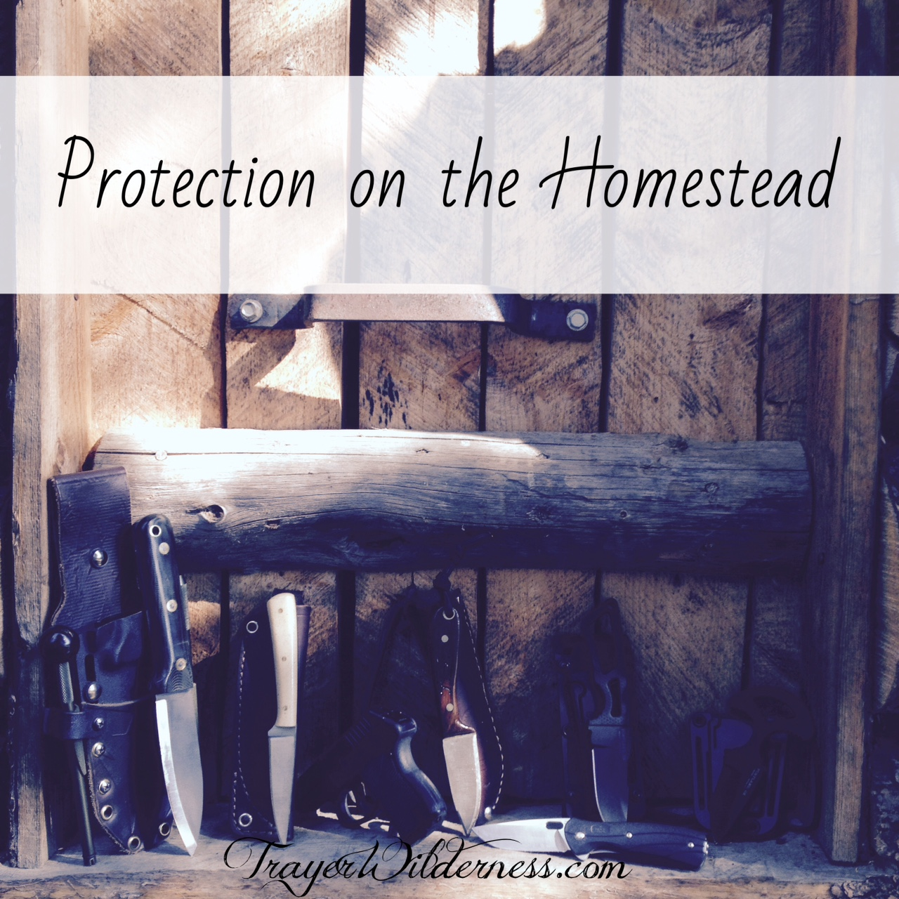 Protection On The Homestead