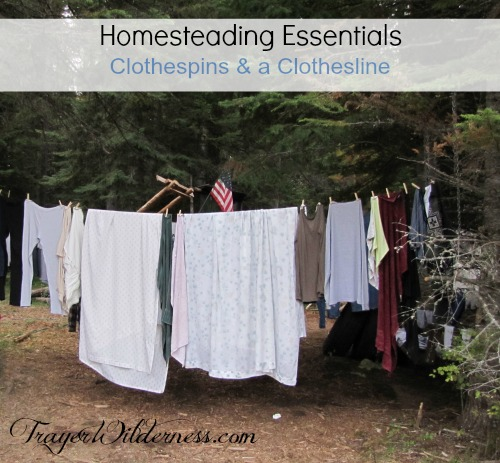 Review:  Homesteading Necessity – Clothespins