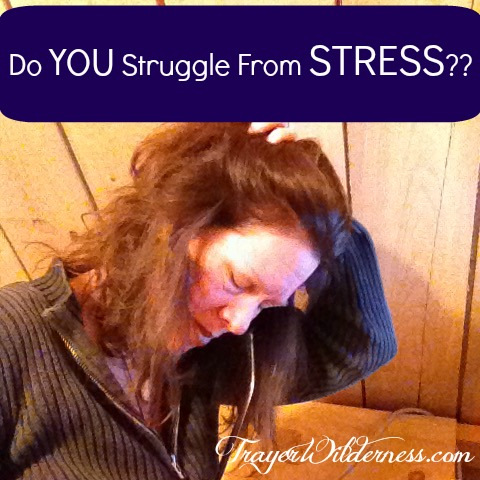 52 Weeks of Wellness – Week 6 – Featuring Stress and How To Cope With It