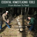 Essential Homesteading Tools From Kitchen To Field