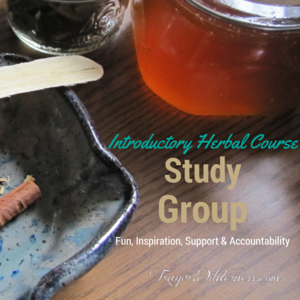 Introductory Herbal Course Study Group