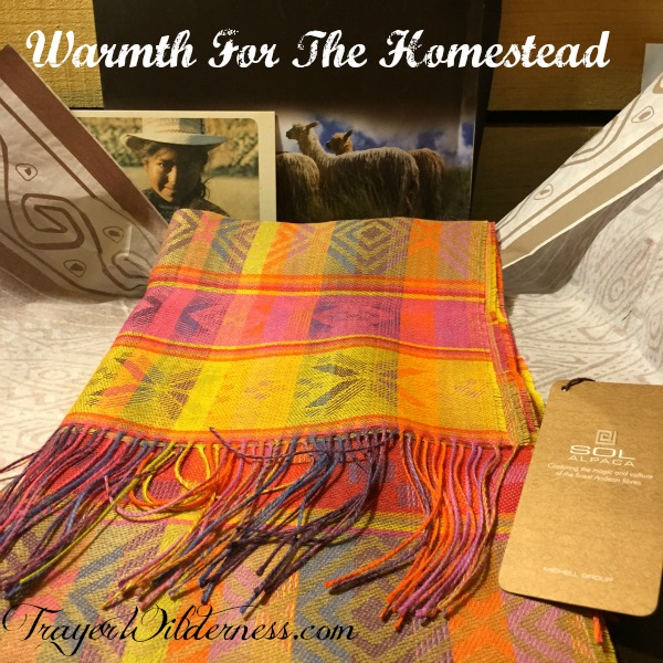 Using Alpaca & Wool For Warmth & Survival On The Homestead