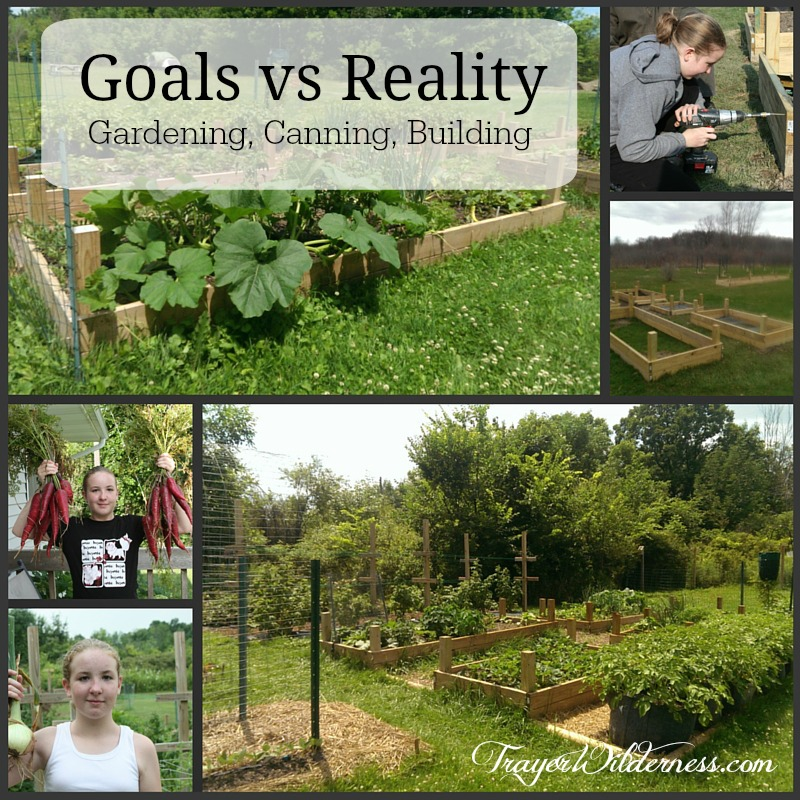 Goals vs. Reality – Gardening, Canning, and Building
