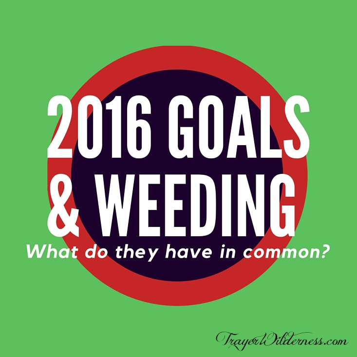 2016 Goals & Weeding: What do they have in common?