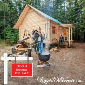 For Sale – 5 Acres Off-Grid Solar Homestead