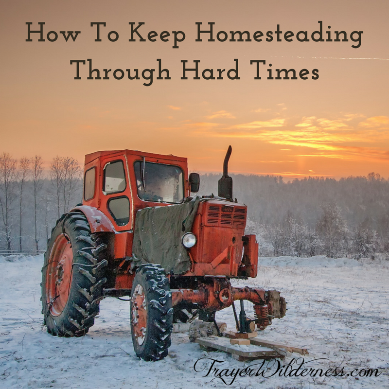 How To Keep Homesteading Through Hard Times