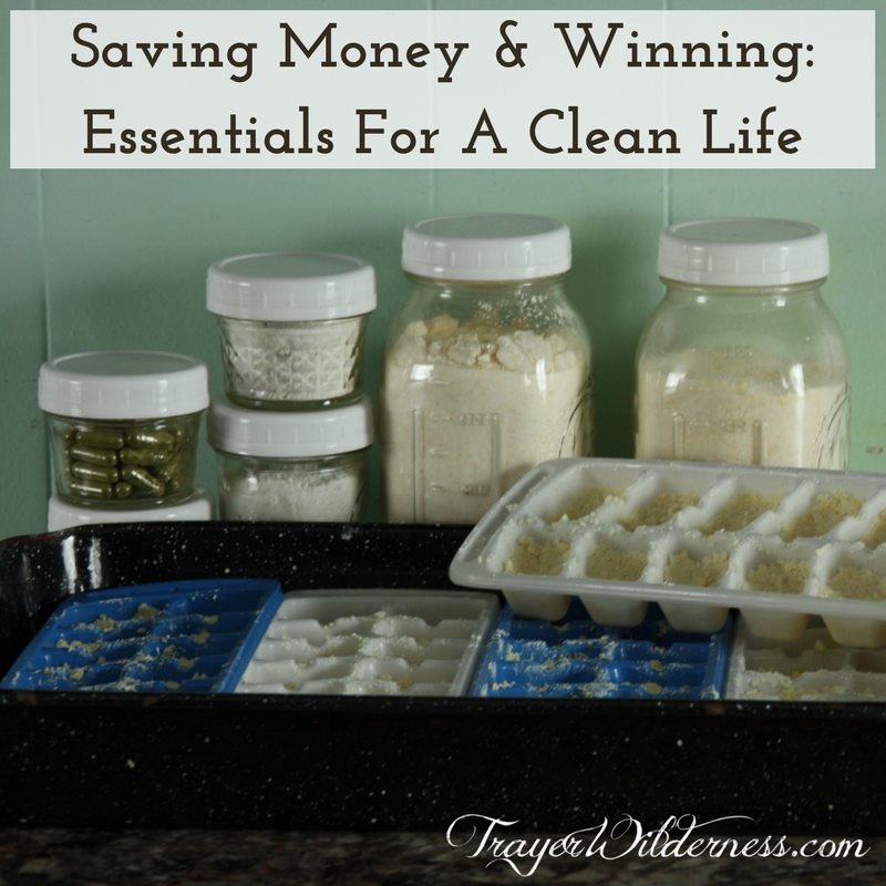 Saving Money And Winning With Money: Essentials For A Clean Life