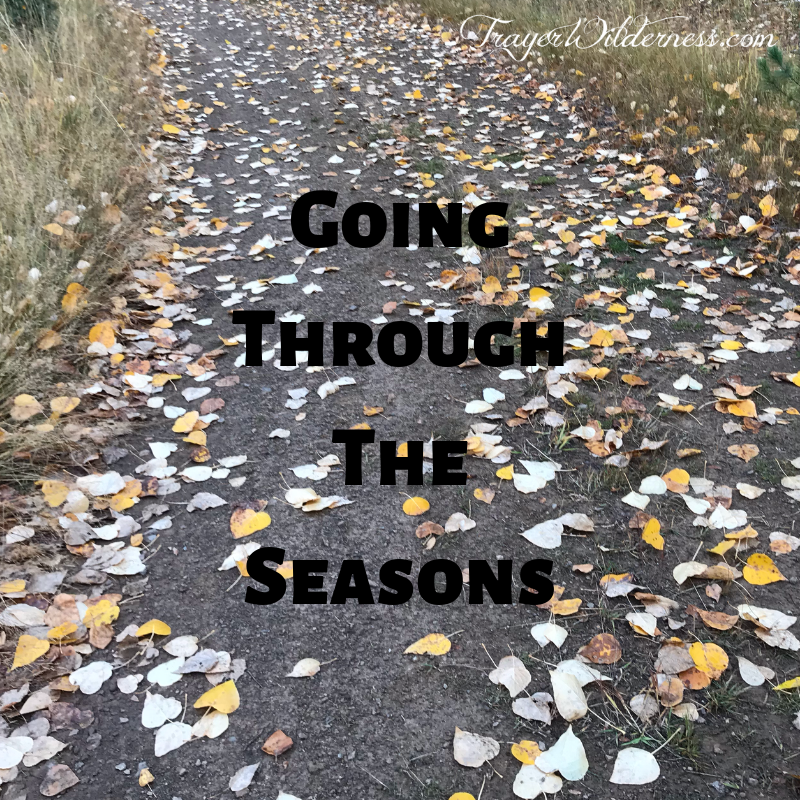 Going Through The Seasons