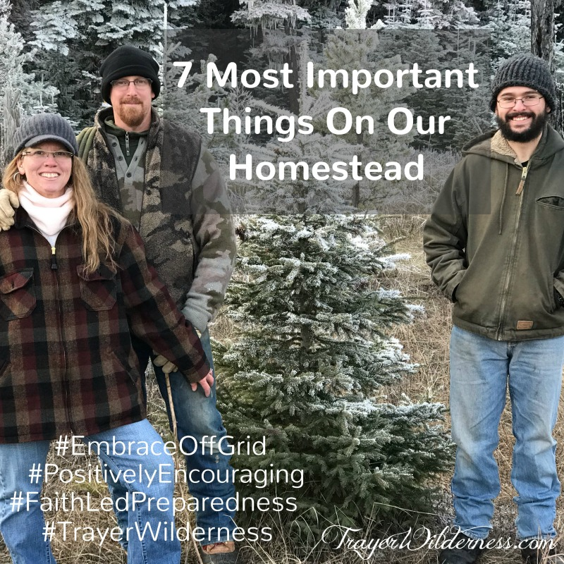 7 Most Important Things On Our Homestead