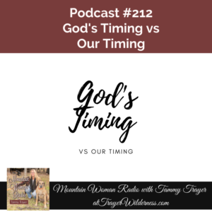Podcast #212: God's Timing vs Our Timing