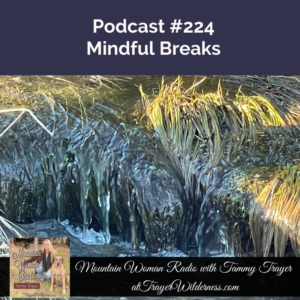 Podcast #224: Why We Should All Be Taking Mindful Breaks