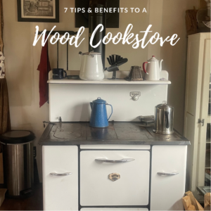 7 Benefits & Tips For Using A Wood Cookstove